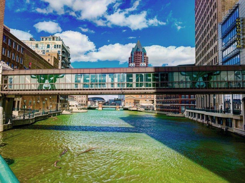 Fearthedeer Milwaukee Bucks Visual Communication